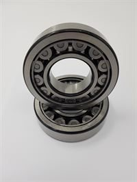 pm100 rotor bearings